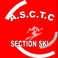 logo section ski